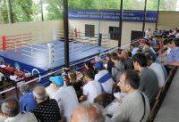 В Кисловодске чествовали олимпийскую сборную страны по боксу