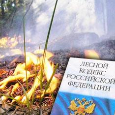 конституция рф утверждает о лесе магазин термобелья предлагает