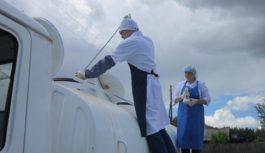О нарушении требований Технического регламента «О безопасности молока и молочной продукции»
