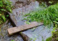 Технический «запуск» Старого озера выявил проблемные места