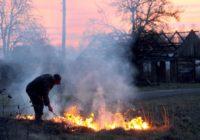 О назначении сельхозкооперативу административного штрафа в 400 000 рублей за сжигание сухостоя в Ставропольском крае