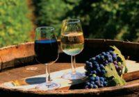 День молодого вина перенесен