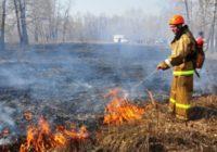 Пожарные Кисловодска оперативно потушили пал травы