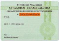 Гражданам РФ выдадут новое страховое свидетельство