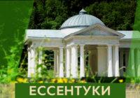 Логотип курорта выбирали в Ессентуках