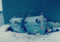 Кто переворачивает мусорные баки в Кисловодске?