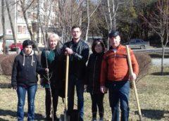 В Кисловодске прошла акция по высадке деревьев