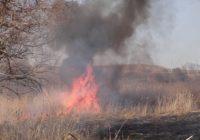 Об опасности возгорания сухой растительности