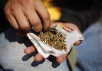 Кисловодчанина посадили за хранение наркотиков