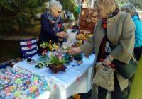 Как в Кисловодске прошёл День гостеприимства?