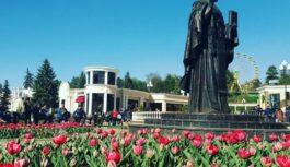 В Кисловодске зацвели тюльпаны