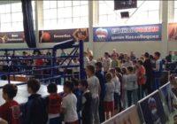 В Кисловодске проходит Открытый Кубок края по кикбоксингу