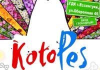 Выставка-раздача бездомных животных пройдет в Ессентуках