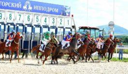 На пятигорском ипподроме разыграют приз имени С.М.Будённого