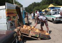 Полосатый рейд в Пятигорске или как спрессовали арбузы