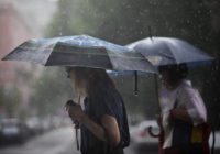 Дожди с грозами омрачат выходные на Ставрополье