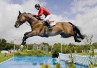 В Пятигорске пройдет турнир по конному спорту
