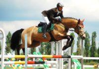 Турнир по конному спорту прошел в Пятигорске