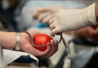 Сдача донорской крови должна быть согласована с работодателем