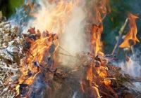 Жители Ессентуков оштрафованы за разведение костров