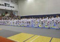 Пятигорчане показали отличные результаты на играх по айкидо