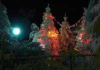 В Ессентуках проходит Новогодний конкурс