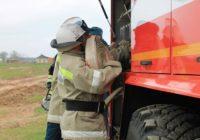Пожарные ПАСС потушили сено и спасли домашнее хозяйство