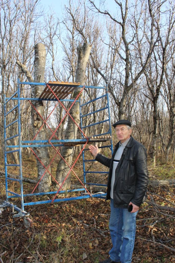 Доска объявлений лесной промышленности города кисловодск дать объявление бесплатно мыски