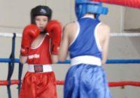 Турнир по боксу на кубок Ставрополья