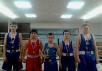 Юные кисловодские боксеры выиграли турнир на КМВ
