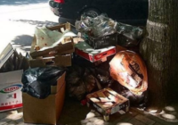 Пятигорчане пожаловались на свалки в центре города