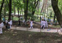 Сотрудники санатория Луч убрали прилегающую территорию