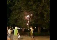 В Комсомольском парке из-за короткого замыкания загорелась ель