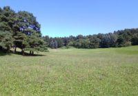 Кисловодск. Первомайская поляна