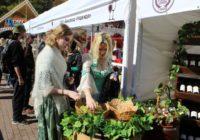 Форум-презентация Молодое вино пройдет в Кисловодске
