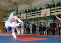 300 Лучших тхеквондистовРоссии съехались на турнир в Ессентуки