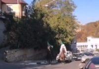 Смешались в центре кони, люди, автомобили…