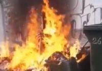 Хулиганы сожгли мусорный бак в Кисловодске