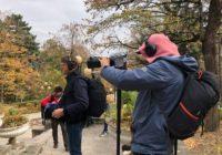 Съемки передачи о путешествиях проходят в Железноводске