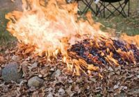 Сознательные ессентучане вышли на борьбу с сжигателями листвы