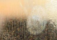 Вор – наркоман попался по отпечаткам пальцев