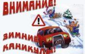 Инспекторы ГИБДД предлагают провести Безопасные зимние каникулы