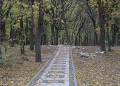 Колесо обозрения и аттракционы построят в ессентукском Парке