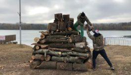 На ессентукском озере в разгаре работы по омоложению деревьев