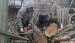 Порывы ветра сорвали в Ессентуках баннеры и повалили деревья
