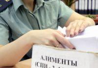 Неуплата алиментов, влечет ли лишение родительских прав?