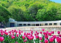 Весной в Железноводске расцветет Большой театр и Дон Кихот