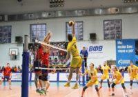 Спортивная мозаика: волейбол, бокс, плавание
