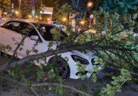 Последствия ночного урагана
