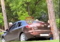 В Кисловодске автомобиль застрял между двух деревьев
